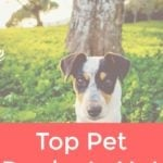 Top Pet Products Not to Skimp On