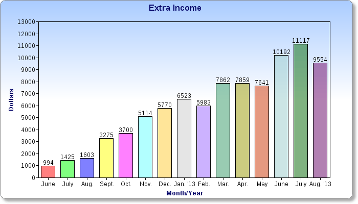 My Extra Income over the past year.