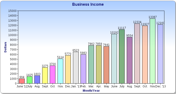 $12,160 in December Business Income