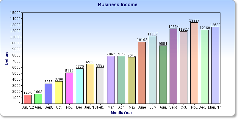 $12,640 in January Business Income