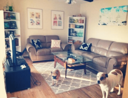 Our Updated Living Room