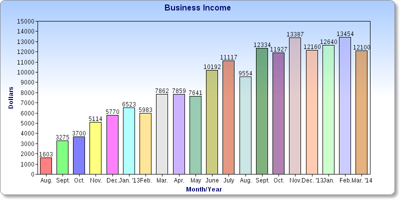 $12,100 in March Business Income