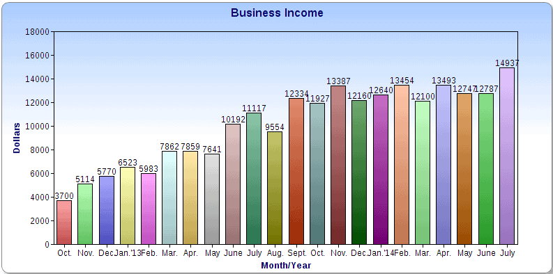 Business Income Chart