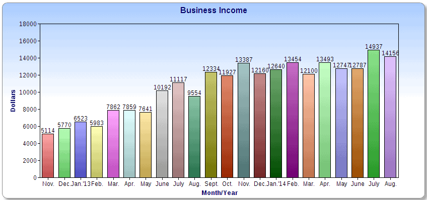 $14,156 in August Business Income