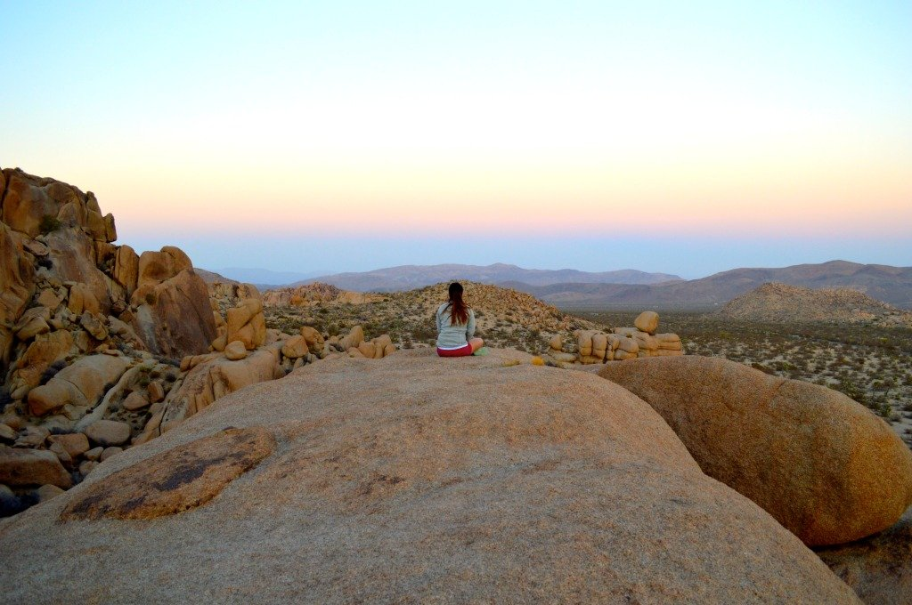 Joshua Tree National Park Sunset Picture