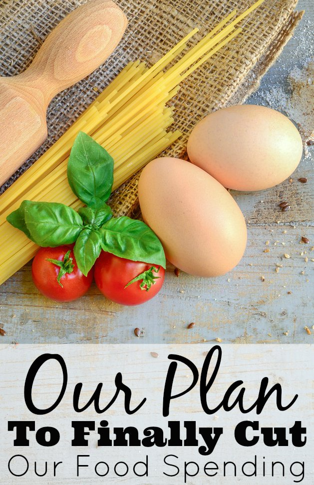 Our Plan To Finally Cut Our Food Spending Food Picture