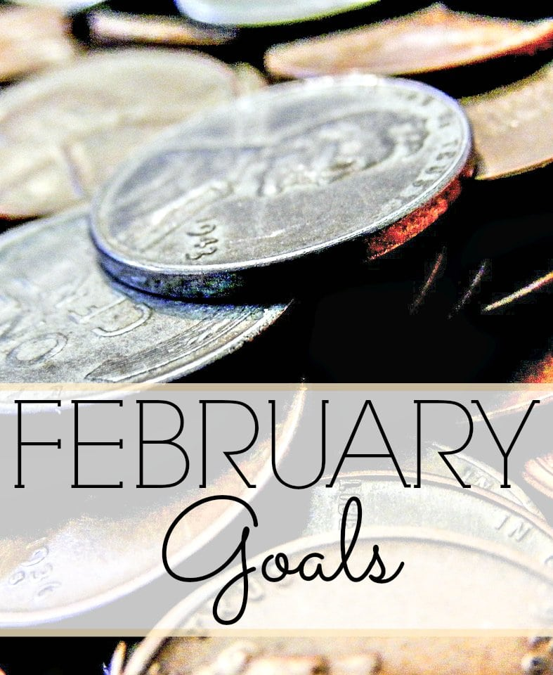 January Goals Update and New February Goals - We FINALLY Eliminated Cable