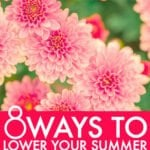 How To Control Your Summer Cooling Costs
