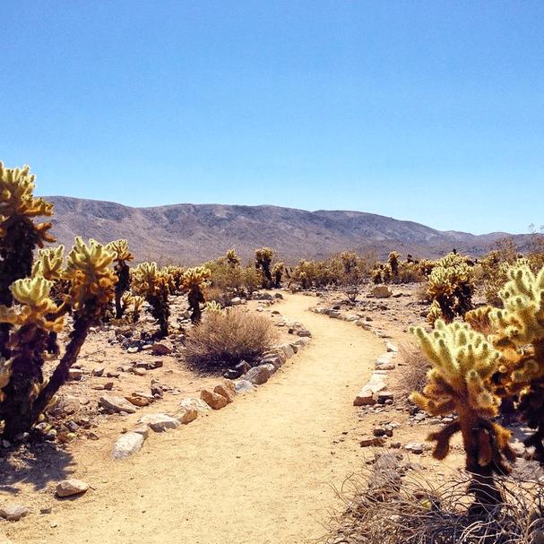 Utah, Nevada, California Road Trip Recap 3