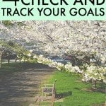 Mid-Year Checkup For 2015 – Why It's Important To Check On Your Goal Progress