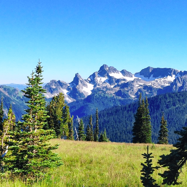 Mount Rainier National Park 2