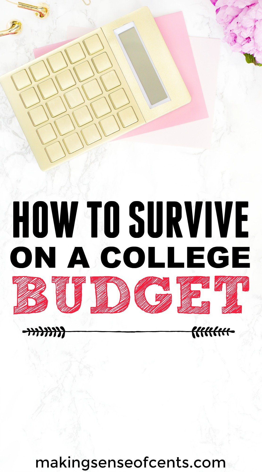 learning how to survive on a college budget