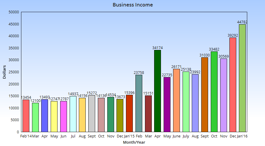 January business income chart