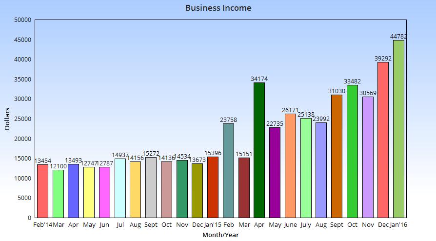 January business income chart