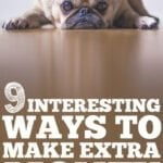 9 Odd and Interesting Ways To Make Extra Income