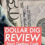 Dollar Dig Review