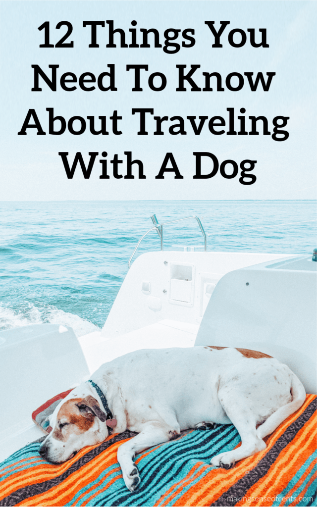 How I Travel Full-Time By RV And Boat With My 2 Dogs